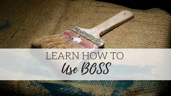 How to use BOSS!